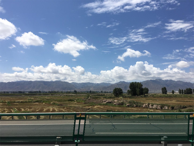 武威の草原