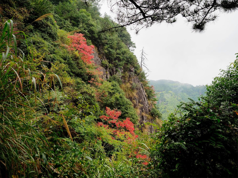 南尖岩・少し紅葉