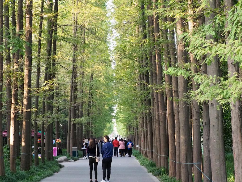 上海植物园(Shanghai Botanical Garden)