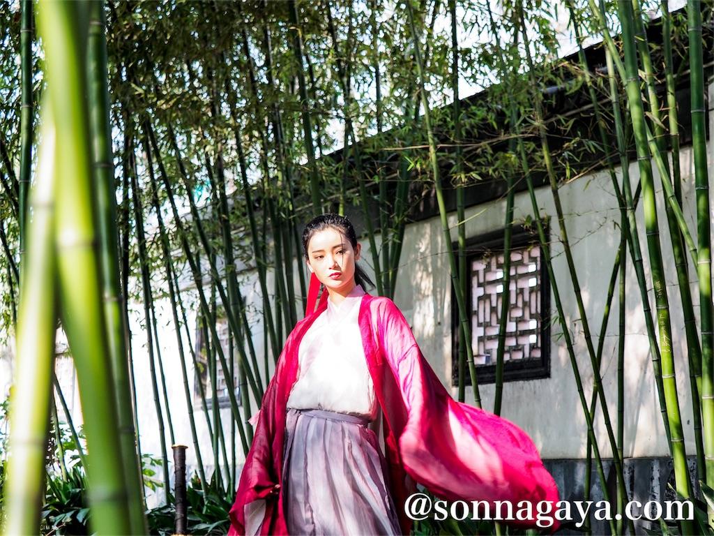 桂林公園竹藪背景壁