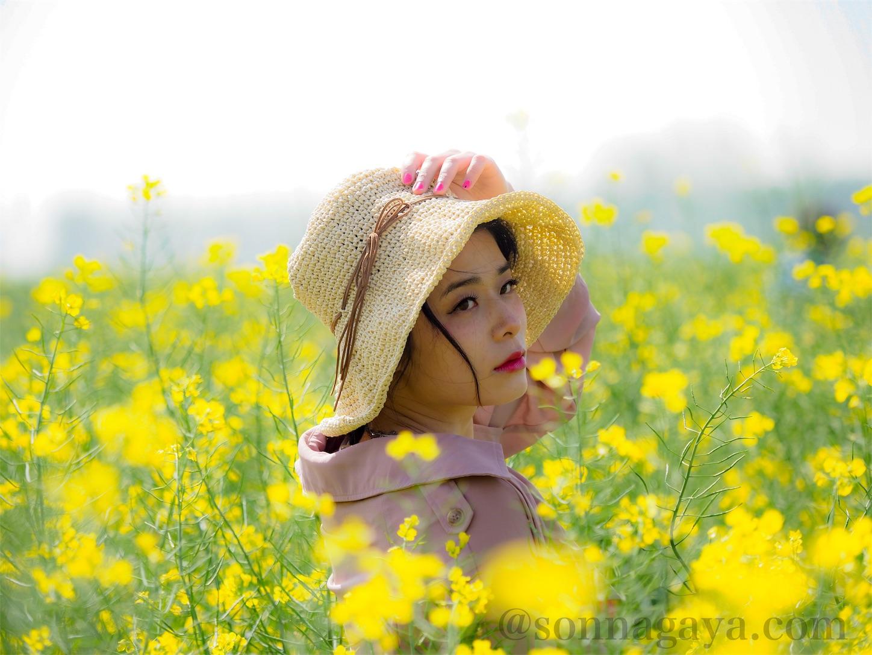 Rapeblossoms-M.ZUIKO DIGITAL ED 40-150mm F2.8 PRO