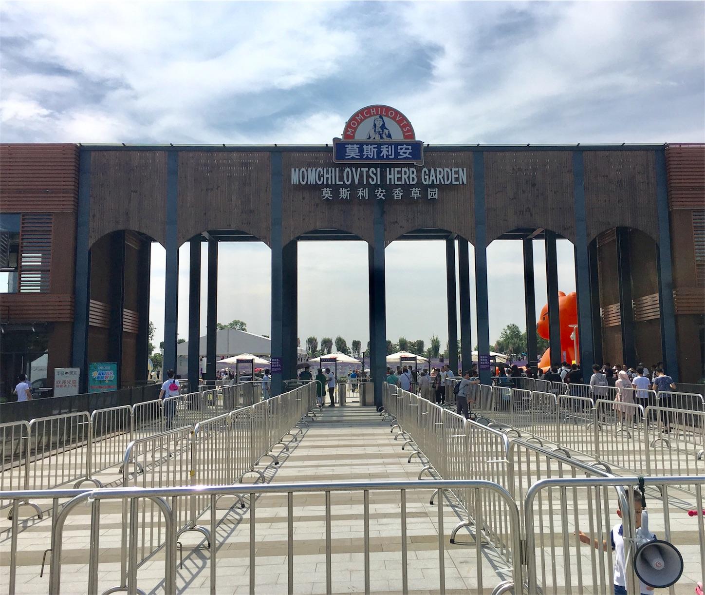 上海薰衣草節
