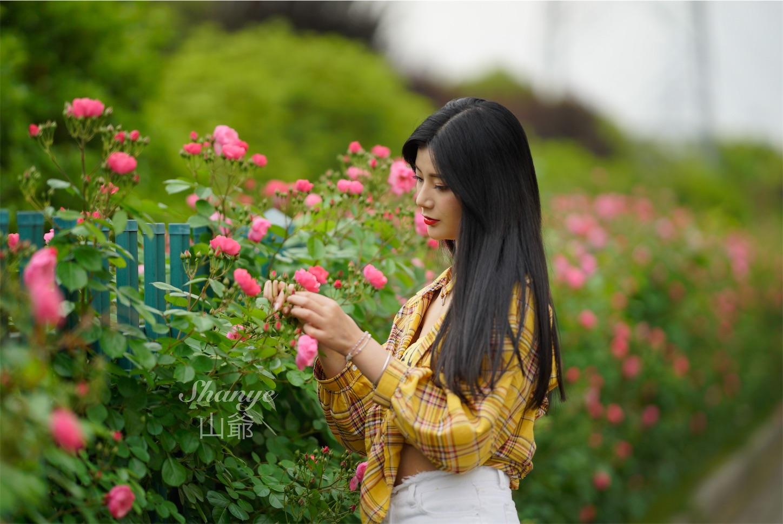 f:id:shan1tian2:20190505220300j:image