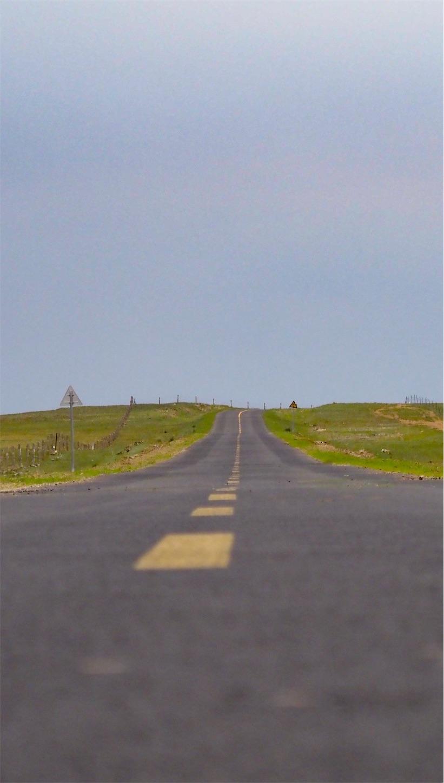 草原の風景,道路