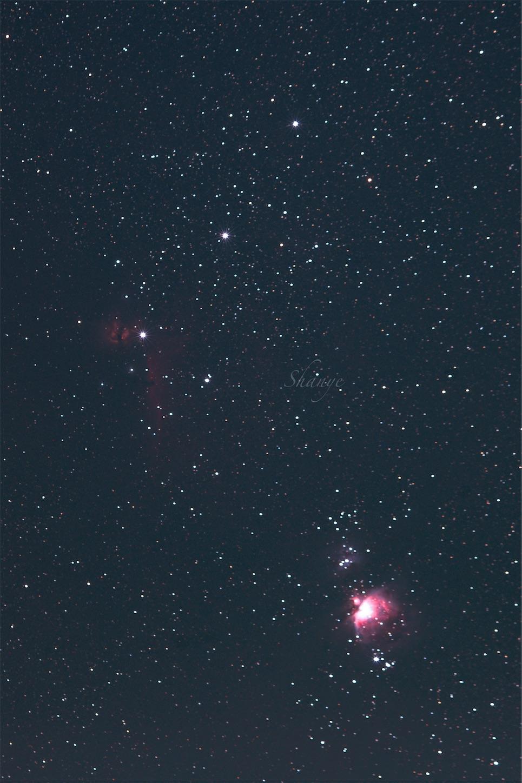 中一光学135mmオリオン座,馬頭,M42