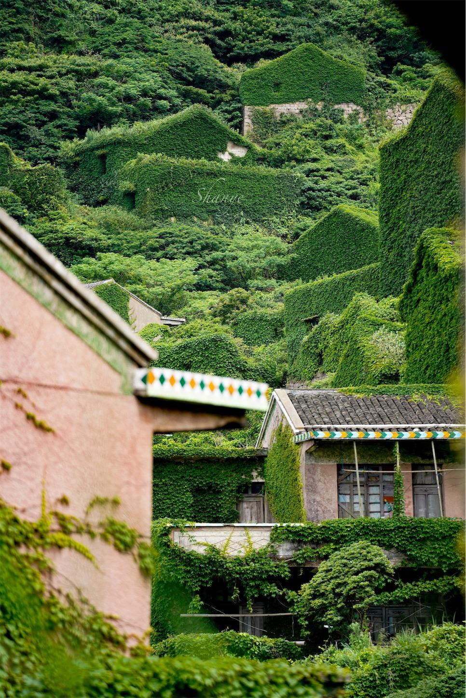 枸杞島後頭湾村(無人村)