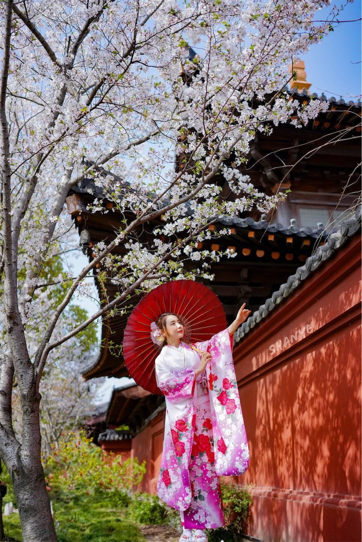 上海桜ポートレート,振り袖,和服,广富林,FE35mmF1.4GM