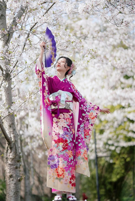 上海桜ポートレート,振り袖,和服