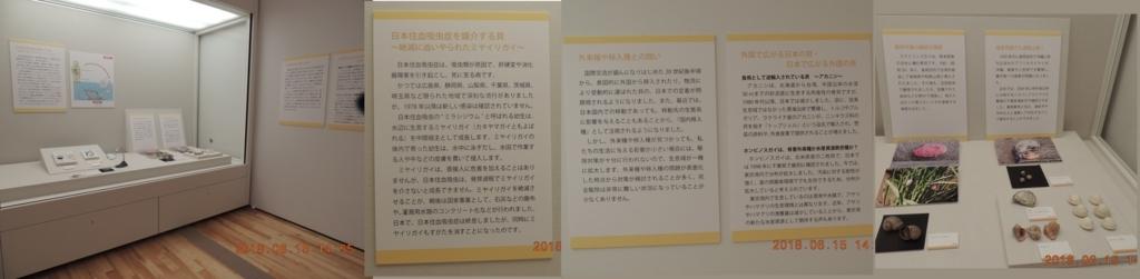 f:id:shangshu:20180615210204j:plain