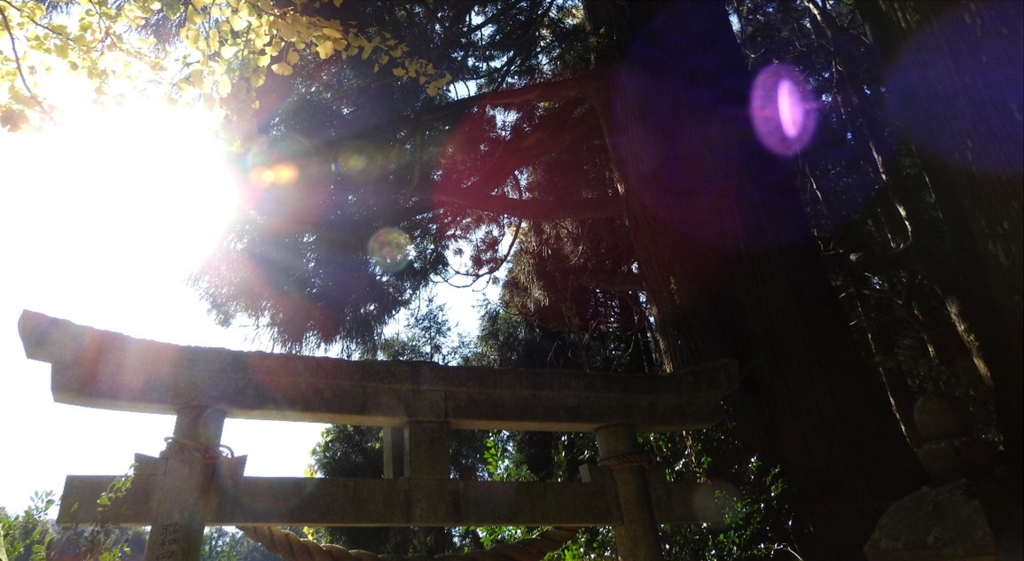 f:id:shannon-wakky:20151201063819j:plain