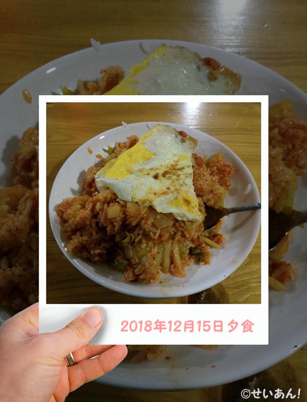 f:id:shanshanduohuizi:20190126015147j:plain
