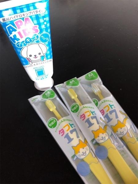 うちの子たちの歯ブラシ&歯磨き粉
