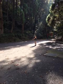 f:id:shaw-san:20161206113513j:plain