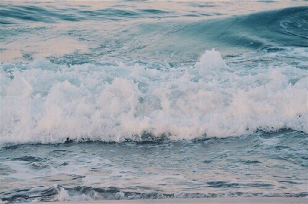 f:id:she_through_sea:20170528151634j:image