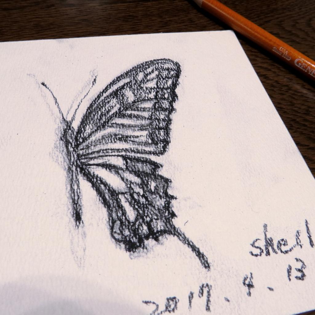 f:id:shellbody:20170413134430j:plain