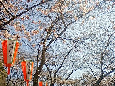 f:id:shi-mann:20080323143500j:image