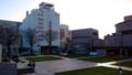 1日目終了後のメイン会場広場