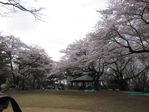 f:id:shi-mann:20110413235716j:image