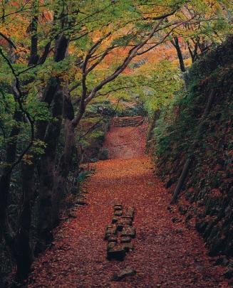 f:id:shi-shi-shimane:20150215161142j:plain