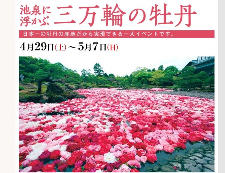 f:id:shi-shi-shimane:20170425131211p:plain