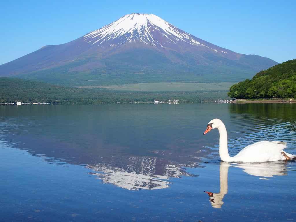 f:id:shi-shi-shimane:20170616183717j:plain