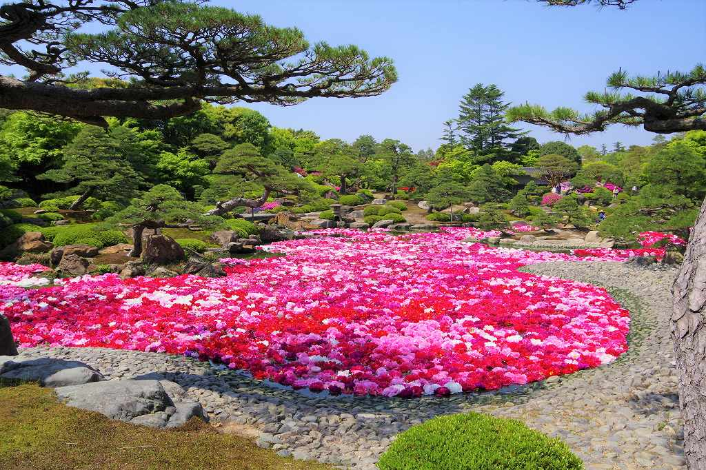 f:id:shi-shi-shimane:20180429184757j:plain