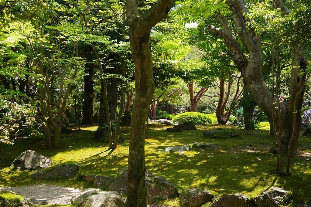 f:id:shi-shi-shimane:20180429205159j:plain