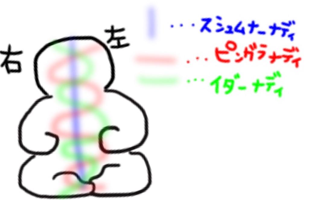 f:id:shi417:20190608230731j:image