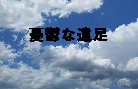 f:id:shiawase-heart:20170602131209j:plain