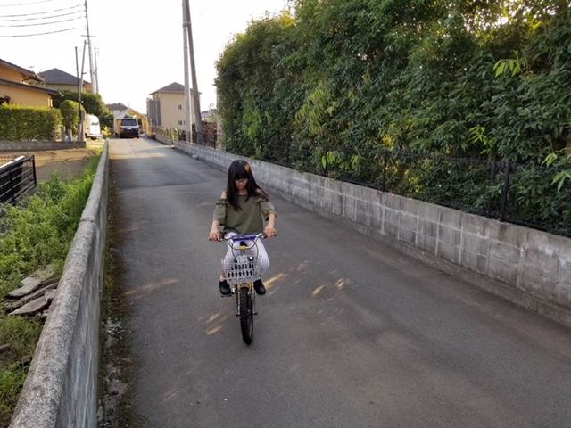 f:id:shiawasenowashiawase:20180617123205p:plain