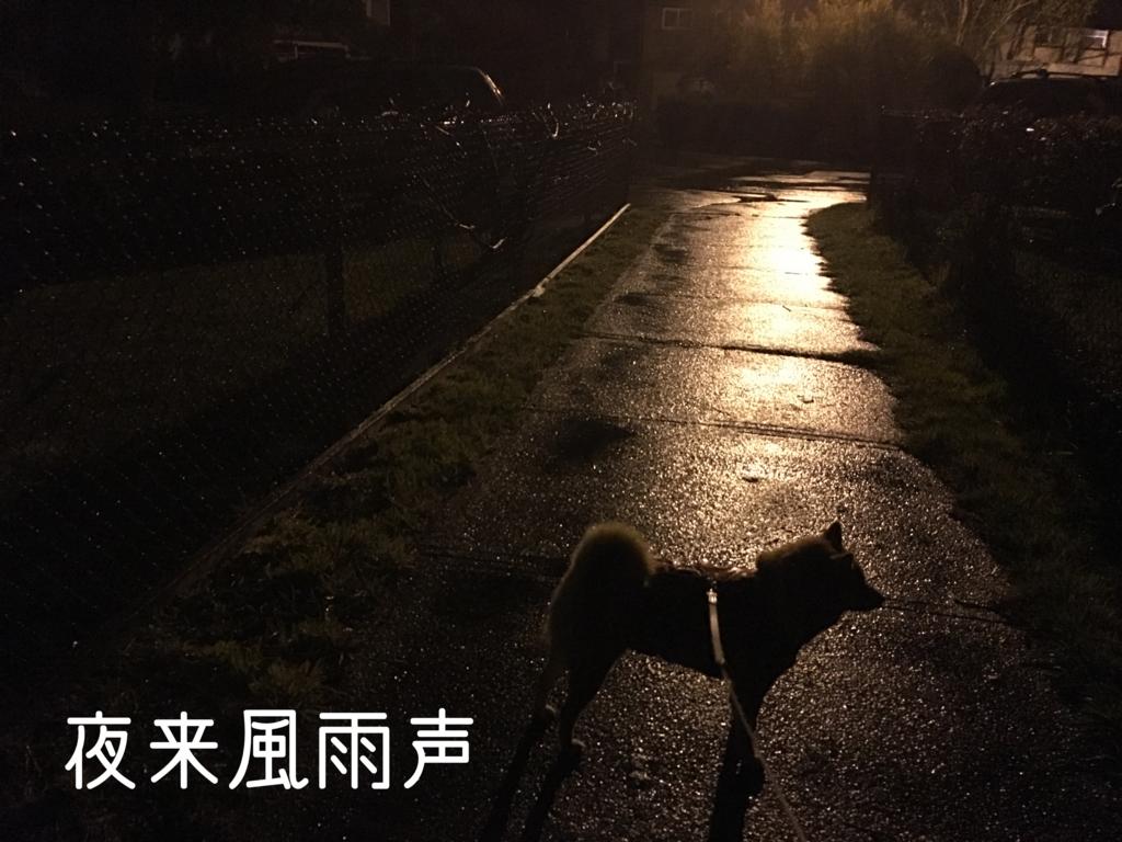 f:id:shiba-inu-in-abroad:20170414110831j:plain