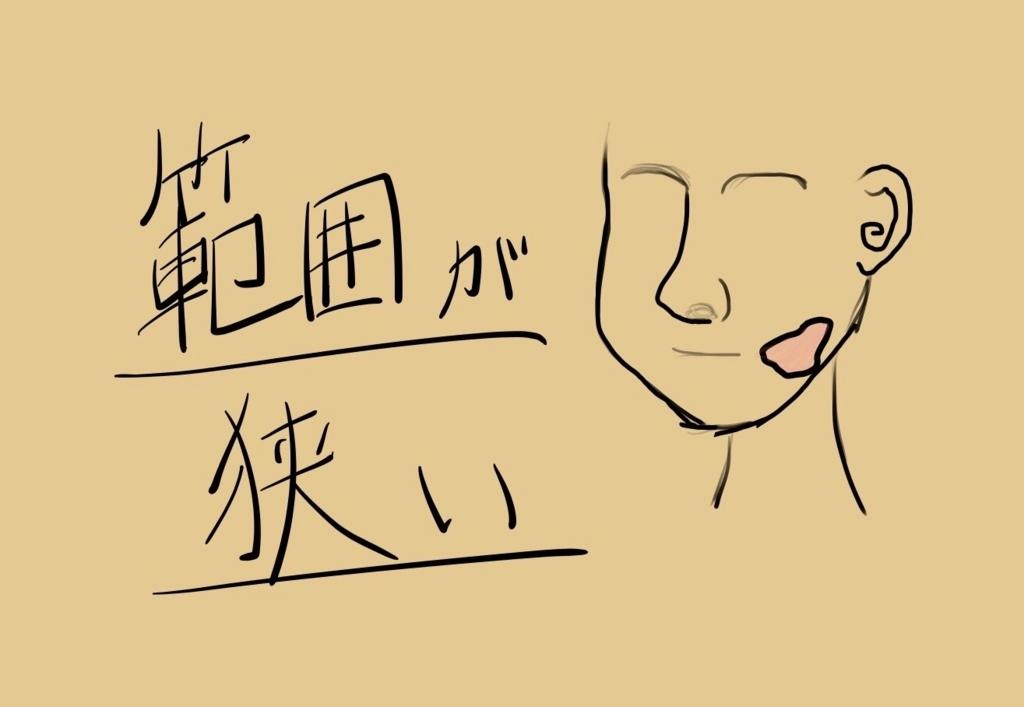f:id:shibaccho:20171020194600j:plain