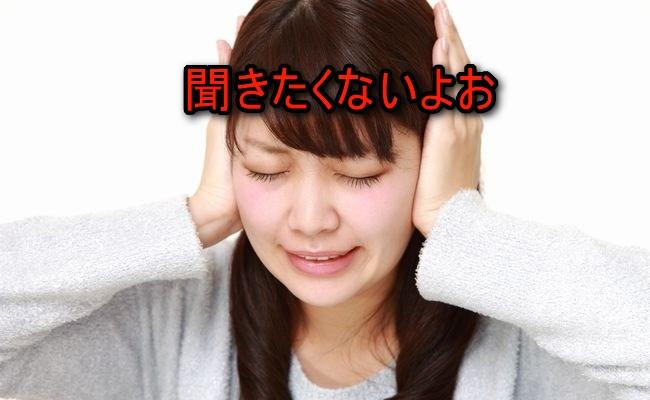 f:id:shibachomama:20170607142126j:plain