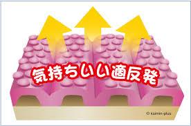 f:id:shibachomama:20170619000922j:plain