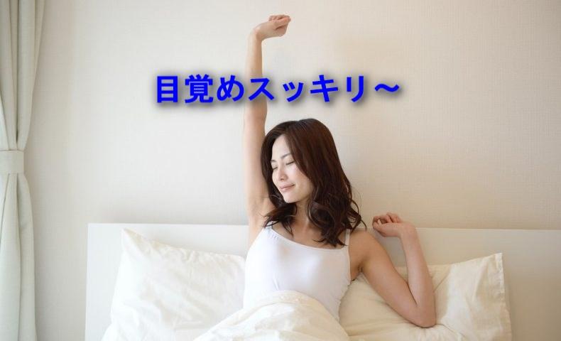 f:id:shibachomama:20170619005209j:plain