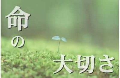 f:id:shibachomama:20170705011804j:plain