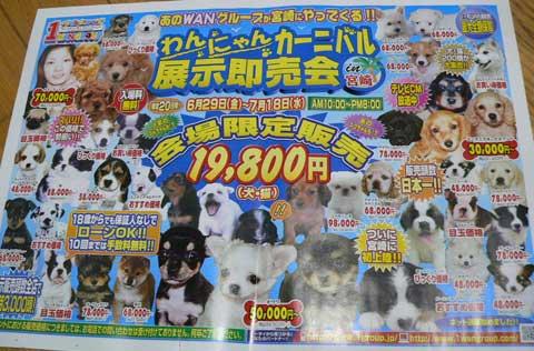 f:id:shibachomama:20170901034100j:plain
