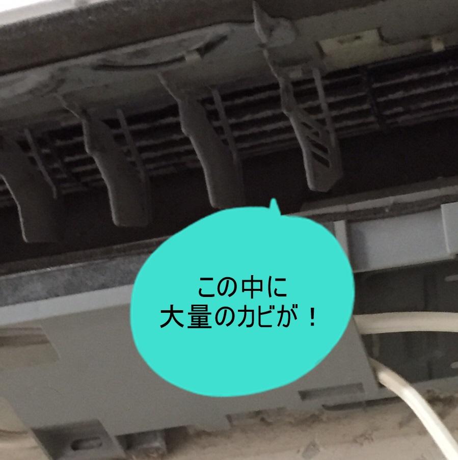f:id:shibachomama:20170920233109j:plain