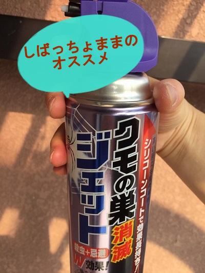 f:id:shibachomama:20171016022404j:plain