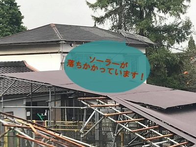 f:id:shibachomama:20171024001511j:plain