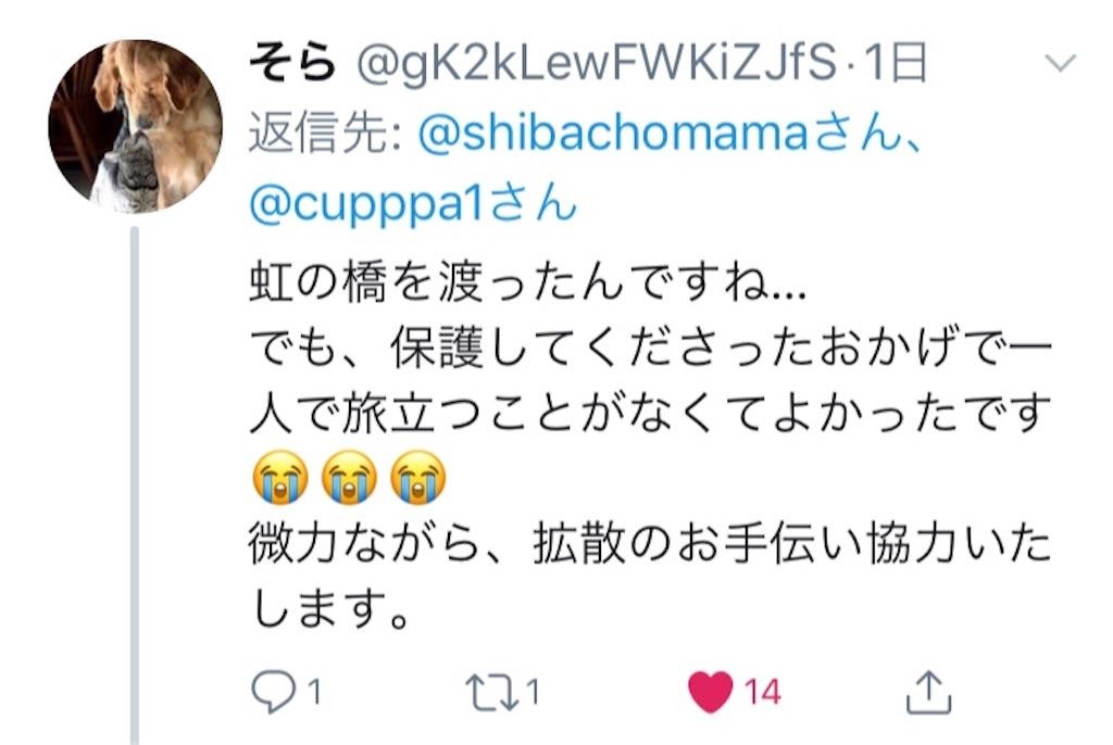 f:id:shibachomama:20190620212841j:image