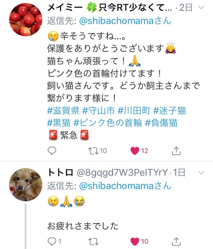 f:id:shibachomama:20190620212848j:image