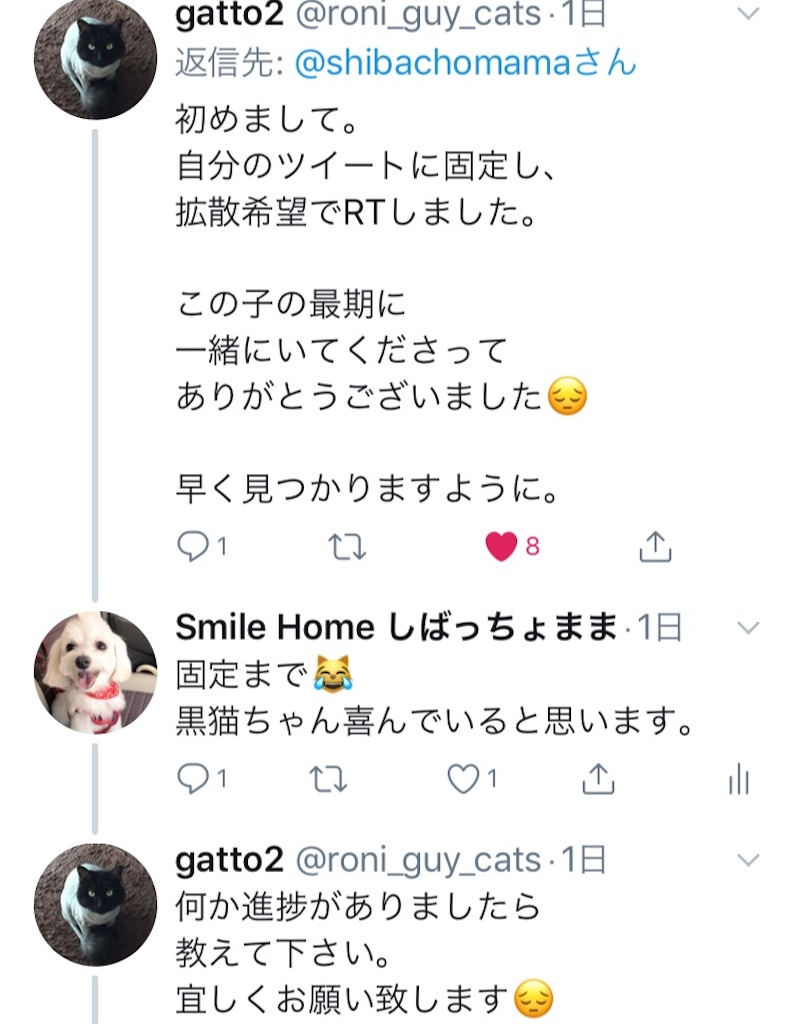 f:id:shibachomama:20190620212854j:image