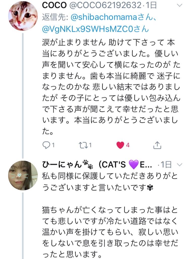 f:id:shibachomama:20190620212900j:image