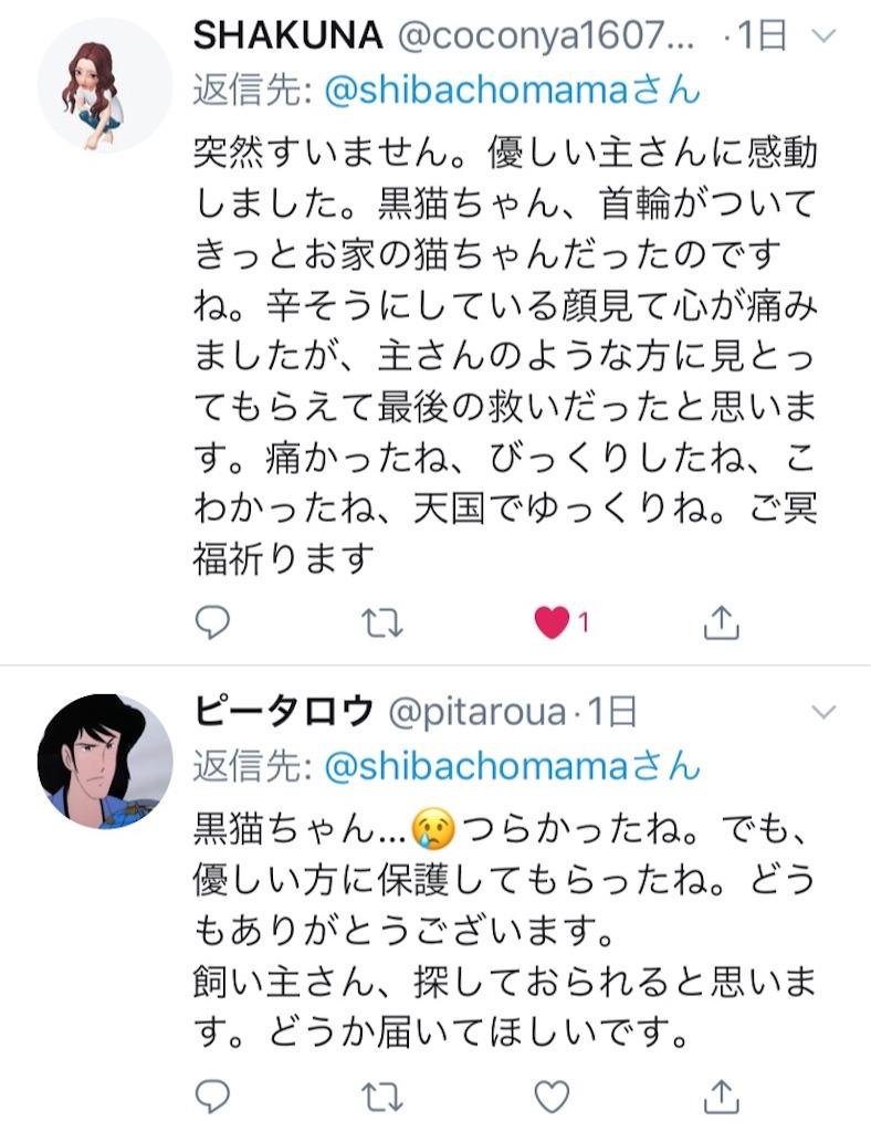 f:id:shibachomama:20190620212903j:image