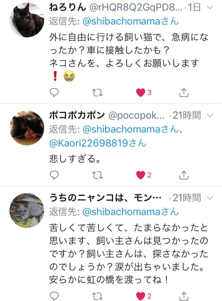 f:id:shibachomama:20190620212906j:image