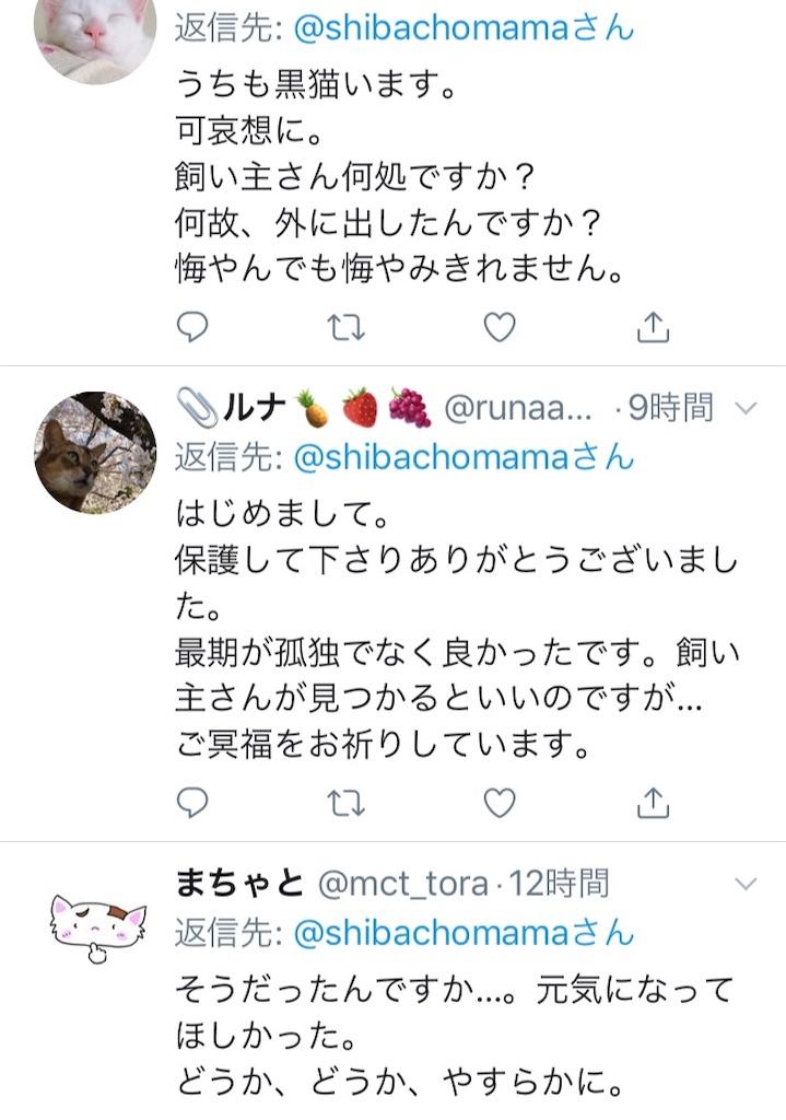 f:id:shibachomama:20190620212909j:image