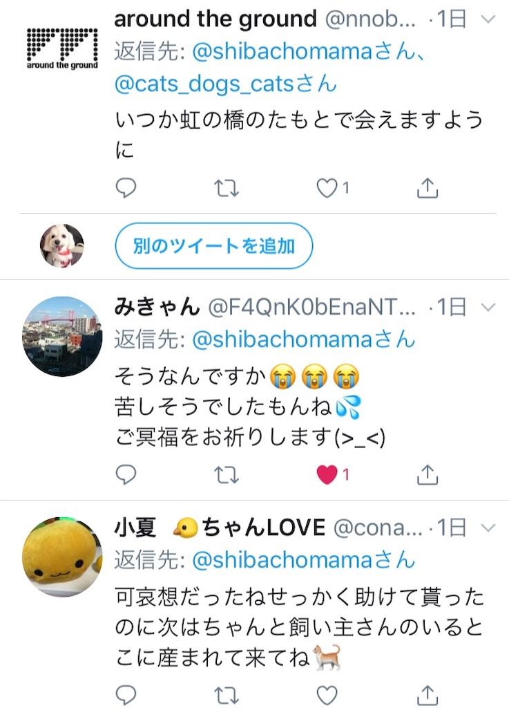 f:id:shibachomama:20190620212912j:image