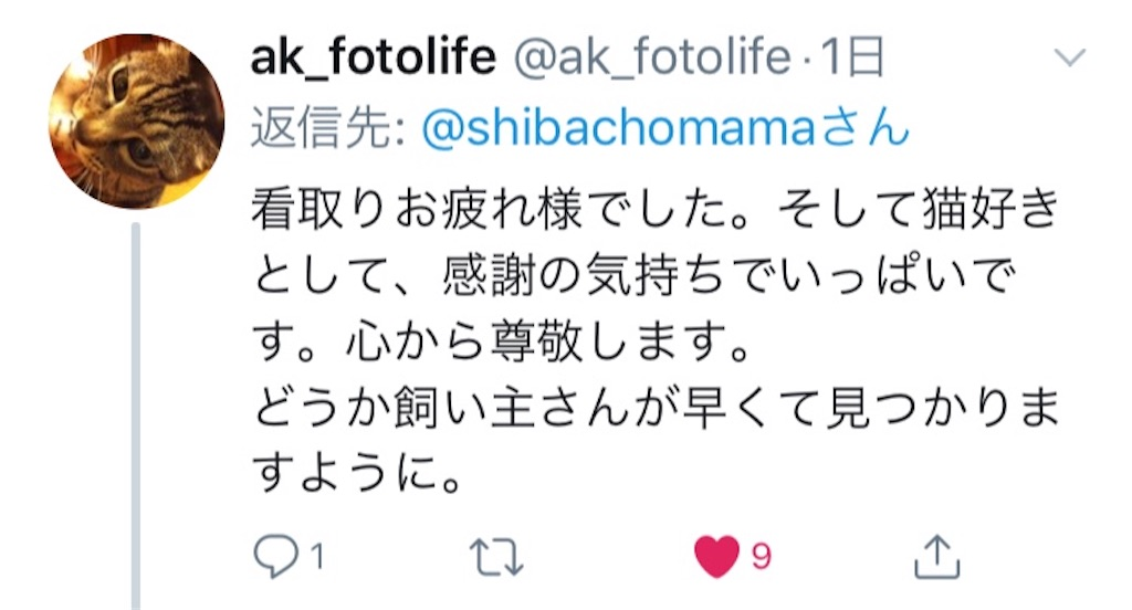 f:id:shibachomama:20190620212915j:image