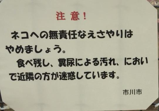 f:id:shibachomama:20190710135608j:plain